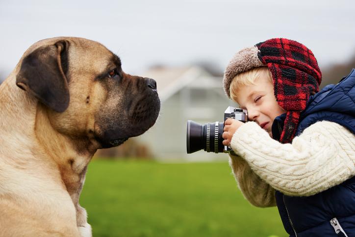 攝影課程、修圖技巧是攝影入門要素之一