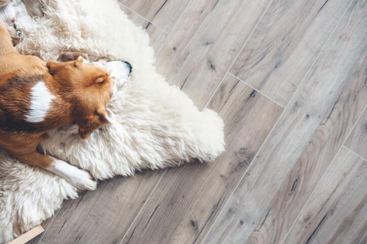 耐磨耐刮又好清理的瓷質木紋磚適合用於地板、並保有不錯的防滑效果,所以也相當適合運用於浴室空間。