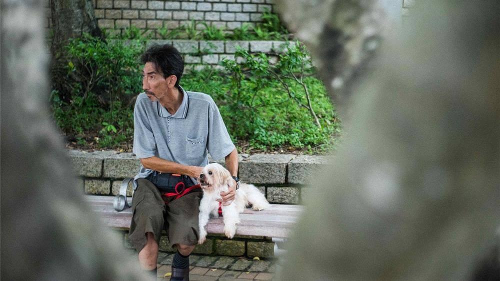 生命相遇在美好卻即將凋零時刻《老人與狗》