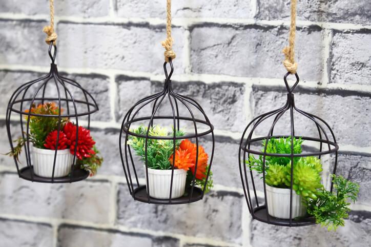 用膩了一般盆栽種植花花草草嗎?除了盆栽之外,也能善用其他素材,像是鐵籠子,尤其是將體積偏小的多肉植物妝點在籠子裡,帶來不同視覺體驗。